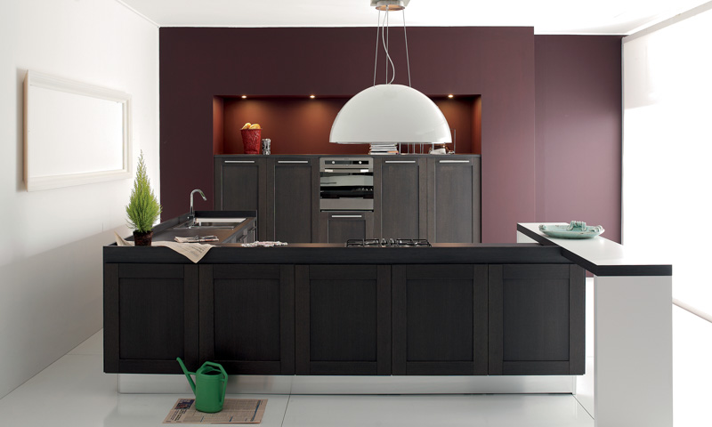 contemporary kitchen cabinets Licia Aran Cucine